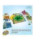 بازی ایرانی فتوسنتز بازیمن (Photosynthesis)